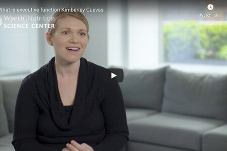 What is executive function Kimberley Cuevas
