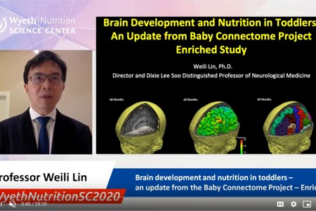 Brain development and nutrition in toddlers