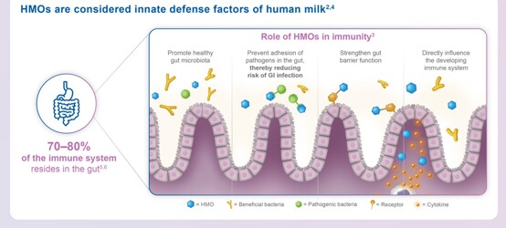 Role of HMOs on Infant Immune Health and Association with Cognition